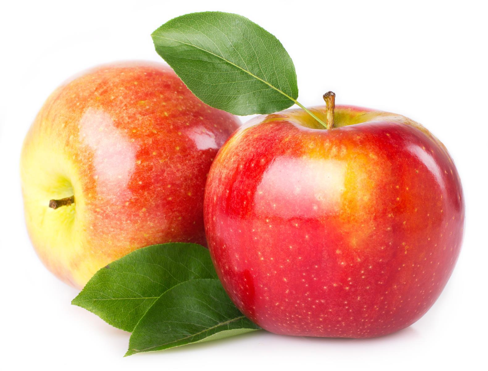 Elma Nerede Yetiştirilir