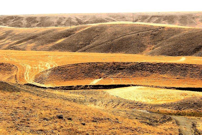 karasal-iklim Türkiyede Görülen İklim Tipleri Nelerdir
