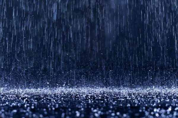 Yağmurun Çok Yağdığı Bölgelerin Özellikleri Nelerdir