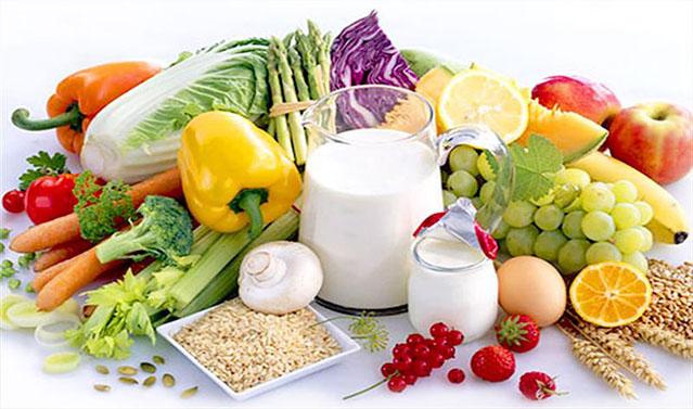 beslenme Canlılar Beslenmeye Neden İhtiyaç Duyarlar