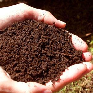 toprak Toprak İnsanlar İçin Neden Önemlidir